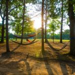 Hammocks at sunset